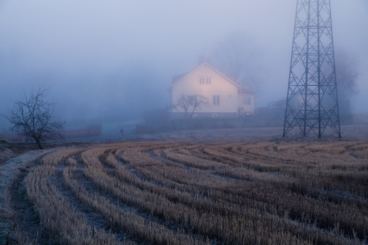 house, fog, powerlines, sunrise